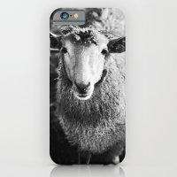 Sheep iPhone 6 Slim Case