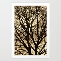 Baum Art Print