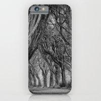The Trees, Norfolk iPhone 6 Slim Case