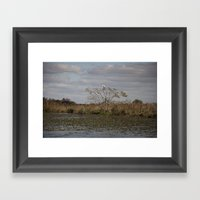 Corrientes - Argentina  Framed Art Print