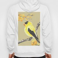 Yellow Finch Hoody