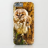 Tawny Owl iPhone 6 Slim Case