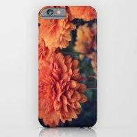 Sweet Orange  iPhone 6 Slim Case