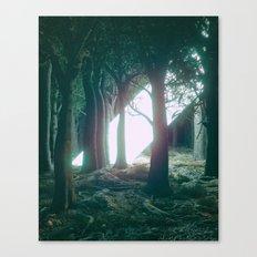 BEAMMM (everyday 08.13.16) Canvas Print
