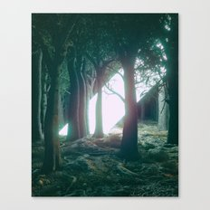 BEAMMM (everyday 08.13.16) Canvas Print