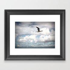 On The Fly Framed Art Print
