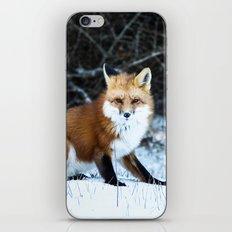 One Fox iPhone & iPod Skin