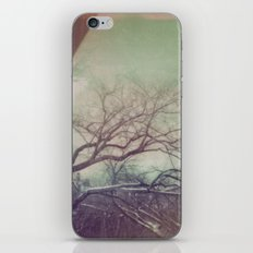 View from my Window iPhone & iPod Skin