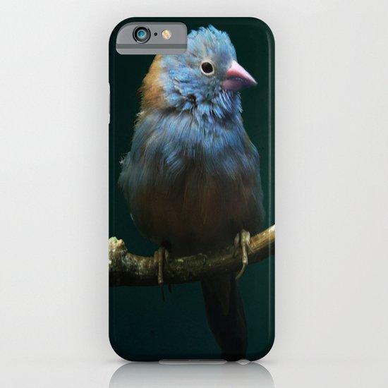 Cordon Bleu Canary iPhone & iPod Case