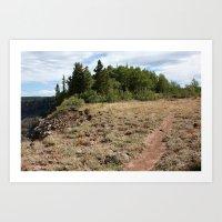 Flowing Park Trail Art Print
