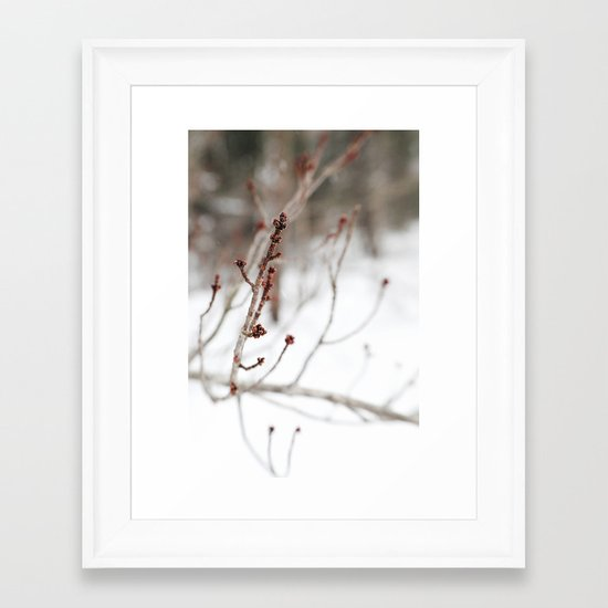 Winter Branch Framed Art Print