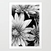 black and white flowers,.  Art Print