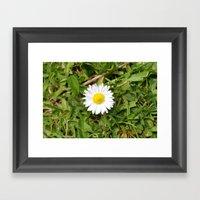 Spot Flower Framed Art Print