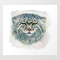 Pallas's Cat 862 Art Print