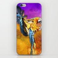 Dazzling Macaw iPhone & iPod Skin
