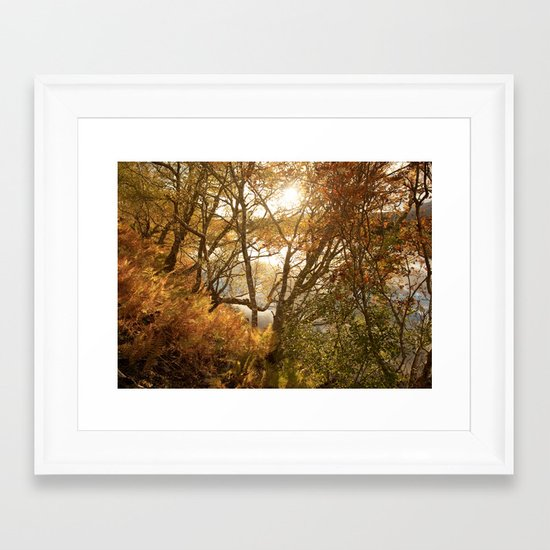 November falls Framed Art Print