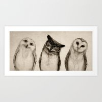 The Owl's 3 Art Print