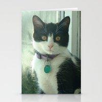 Raindrop Kitty Stationery Cards