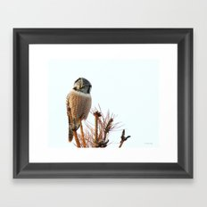 Finding the balance Framed Art Print