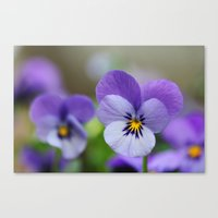 One Spring Thing Canvas Print