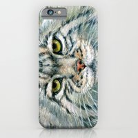 Pallas's Cat 862 iPhone 6 Slim Case