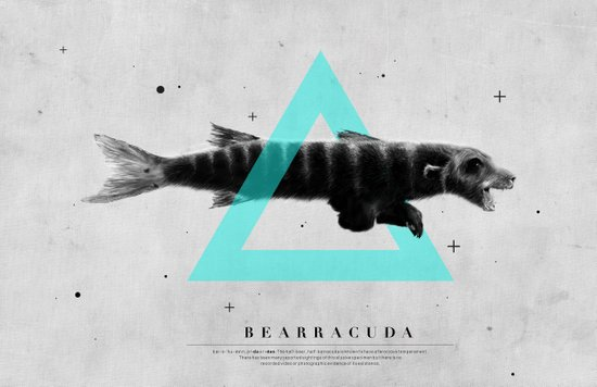 Bearracuda Canvas Print