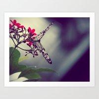 Butterfly in a Tree Art Print