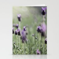 Lavender In Summer Light Stationery Cards