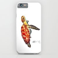 turtle iPhone & iPod Cases featuring Turtle by Alexander Cox