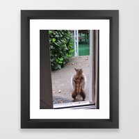 The Neighborhood Flasher Framed Art Print