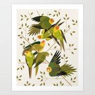 Carolina Parakeets Art Print