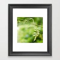 The Little Leaves Framed Art Print
