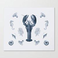 Vintage Sea Life Canvas Print