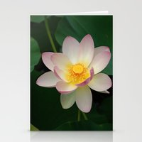Lotus Blossom In Full Bl… Stationery Cards