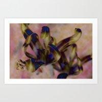 Insect Dreams Art Print