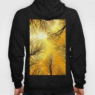 Black Trees Golden Sky Hoody