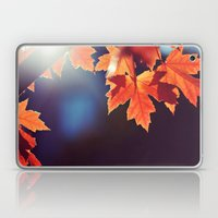 Maple Morning Laptop & iPad Skin