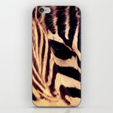 Zazu the Zebra iPhone & iPod Skin
