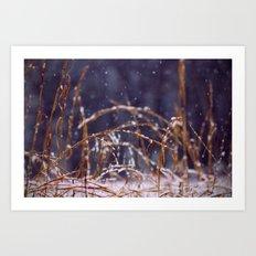 Light Snowfall Art Print