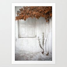 The white window Art Print