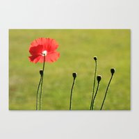 Standing Alone - JUSTART © Canvas Print