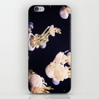The Jellies iPhone & iPod Skin