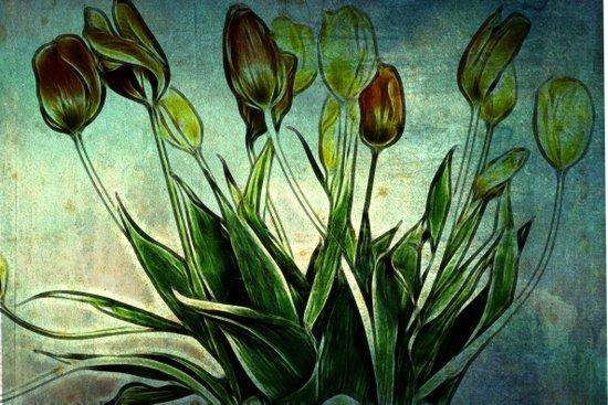 Tulip Design Art Print