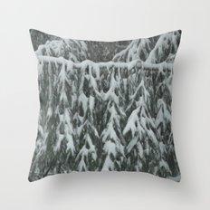 Natrual Decor Throw Pillow