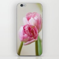 Soft Tulips iPhone & iPod Skin