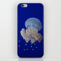 JellyFishi iPhone & iPod Skin
