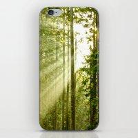 A Light Peeks Through iPhone & iPod Skin