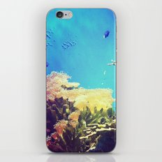 In The Big Blue World iPhone & iPod Skin
