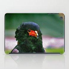Bateleaur Eagle iPad Case