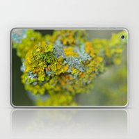 Lichen Laptop & iPad Skin